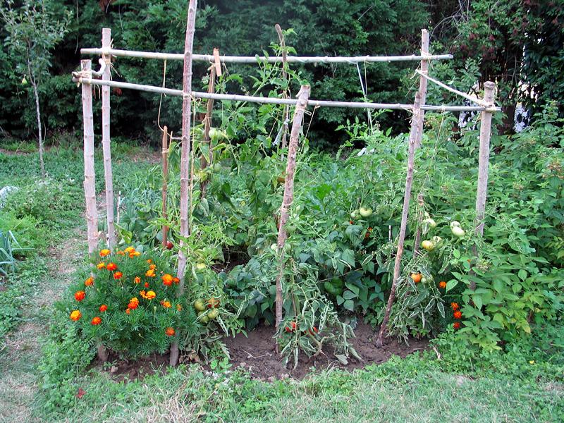 fotos de jardins urbanos : fotos de jardins urbanos:Materiales que no deben faltar en un buen compost – plantasParaCurar