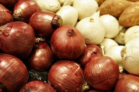 AUTOR: Fir0002 URL: https://es.wikipedia.org/wiki/Archivo:Two_colors_of_onions.jpg