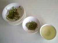 hojas de té verde